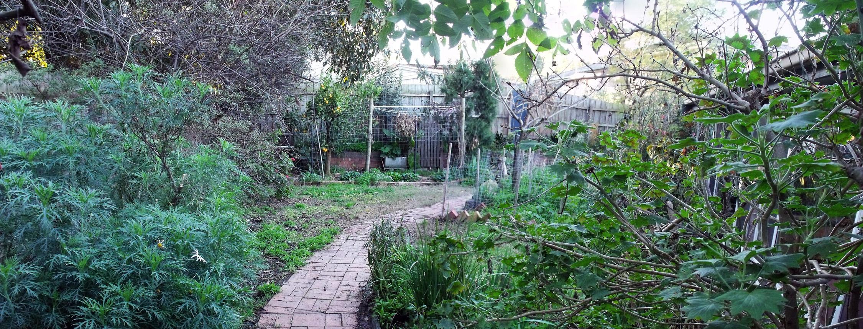 Old Yard 5
