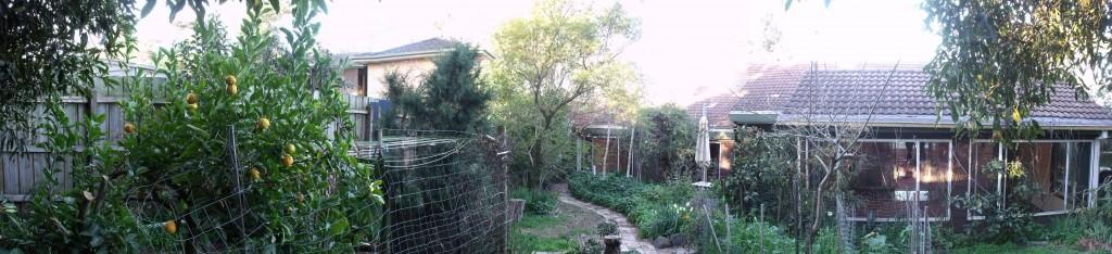 Old Yard 1