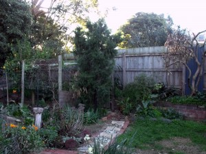 Old Yard 2
